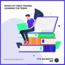 Basics of Forex Trading: Learning the Terms